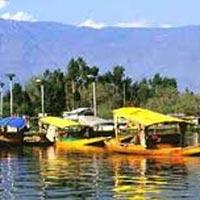 Srinagar (3) - Pahalgam (1) - Gulmarg Tour