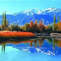 Srinagar (1) – Gulmarg (1) – Pahalgam (1) Tour