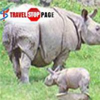 Nepal Wildlife Tours