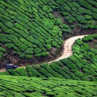 Kerala Tour With Khajuraho