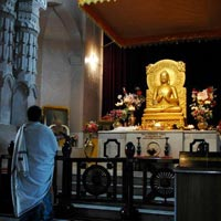 Buddhist Circuit Special Packages 4