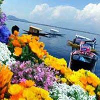 Discover Amazing Kashmir Tour