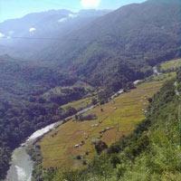 Wander of Nagaland Tour