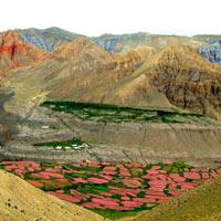Upper Mustang Trekking Tour