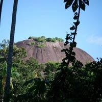 Central Suriname Nature reserve Tour