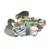 Incredible Madhya Pardesh Tour