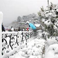 Delhi - Shimla - Manai - Chandigarh Tour