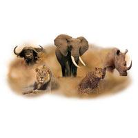 10 Days Tanzania wildlife safari - Zanzibar Beach Holiday Tour