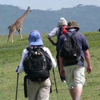 Tanzania Walking Safari Tour