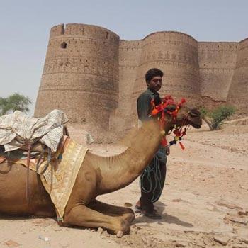 Cholistan Desert Camel Safari Tour