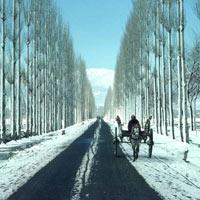 Kashmir - Shivalik Shepherd Valley Tour