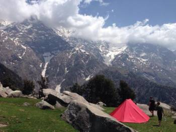 Trek to Dhauladhar Snowline Tour
