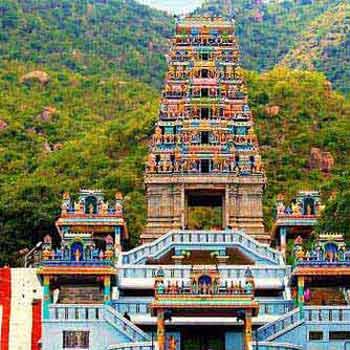 Coimbatore - Mettupalayam - Ooty Tour 3n/4d