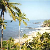Exciting goa (Hot Deal)