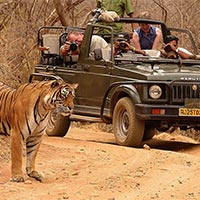 Golden Triangle with Ranthambore Special Tour