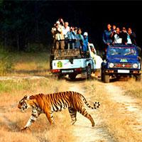 Delhi - Corbett - Causeni - Nainital Tour - 6 Night ...
