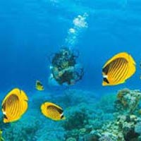 Andaman Honeymoon Tour 3N/4D