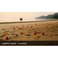 Honeymoon Package in Havelock Island