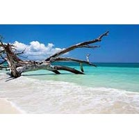 Holidays Packages in Andaman