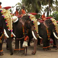 Pure Kerala Holiday Tour