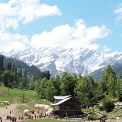 Top Tourist Places To Visit in Manali