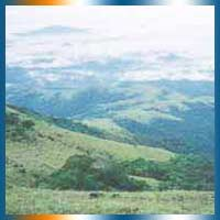 Mountain Trekking in Sullia