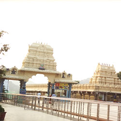 Top Tourist Places To Visit in Warangal