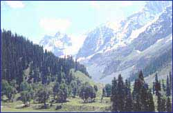 Top Tourist Places To Visit in Sonamarg