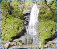 Basin Falls(The Bay)