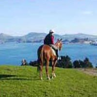Otago Travel Guide