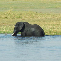 Top Tourist Places To Visit in Okavango