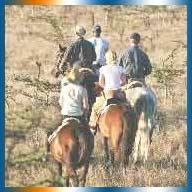 Borana Horse Safari